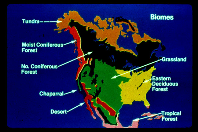 Biomejpg - Biome map of us